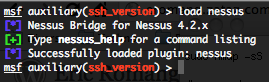 Loading the Nessus plugin